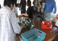 野菜包装の様子